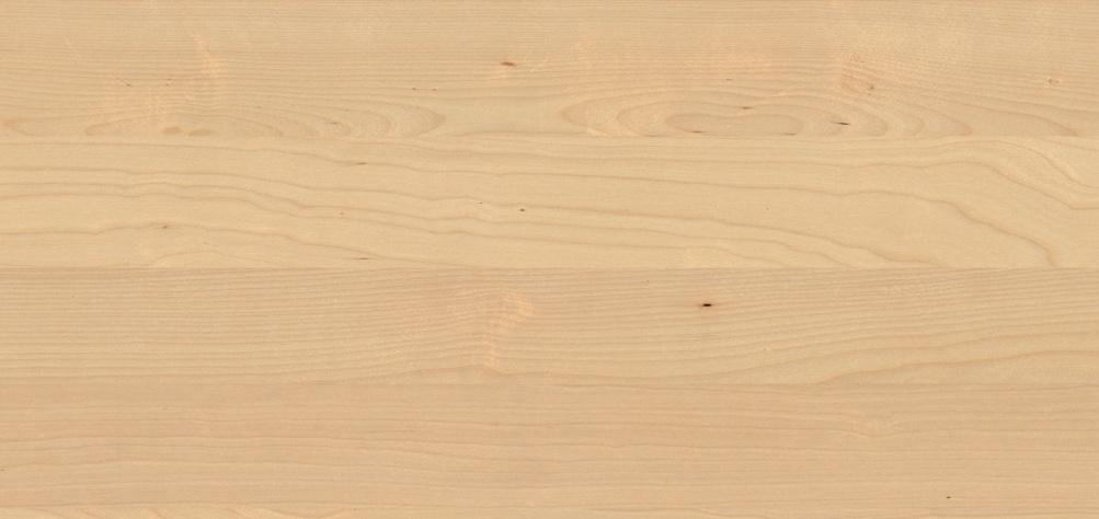 Massivholz Birke für Massivholzmöbel
