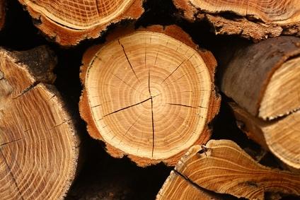 Rundholz für Massivholzmöbel