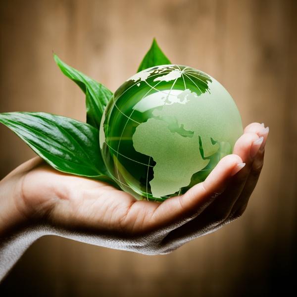 Unsere Umwelt